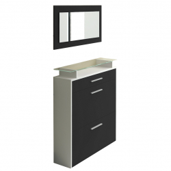 Shoe Cabinet in black high gloss